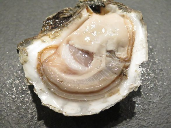 oyster,zinc,mineral