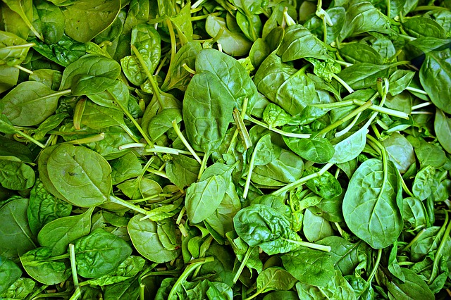 spinach,iron,mineral